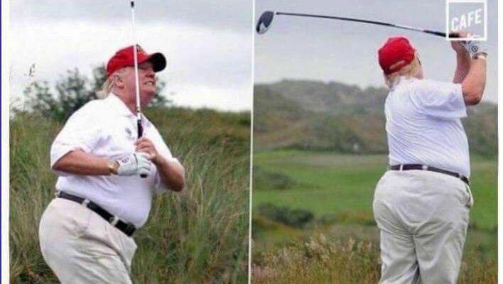 Fat Trump